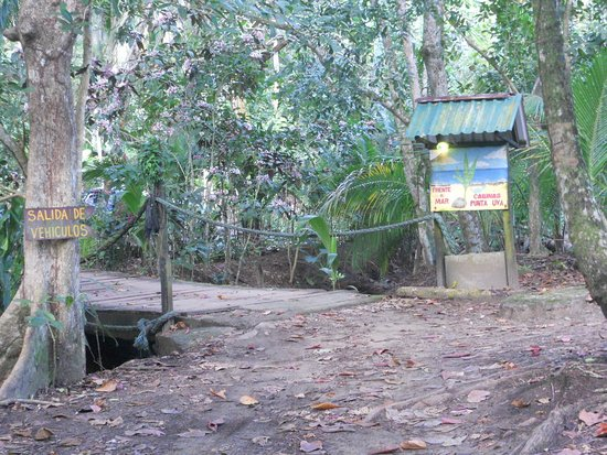 Cabinas Punta Uva: The only way in or out is across this bridge