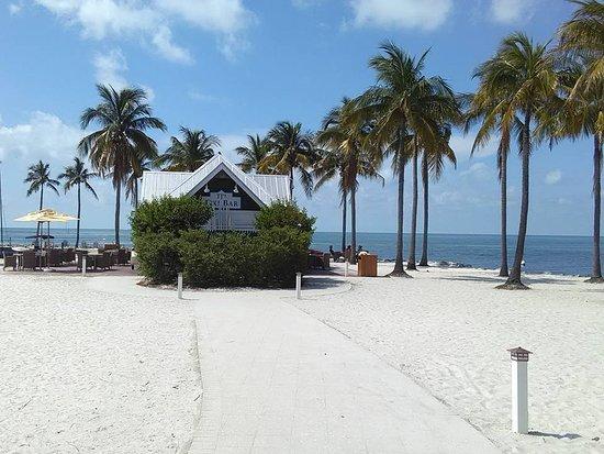 Tranquility Bay Beach House Resort: Looking at the tiki bar