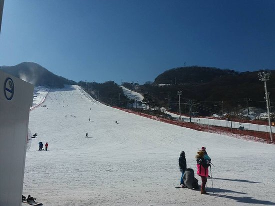 Icheon, Sydkorea: Nice wide open slopes.  Only a small section of this resort.