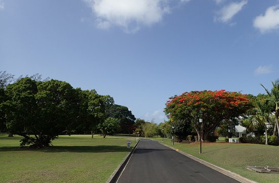 Worthing, Barbados: The surrounding golf course