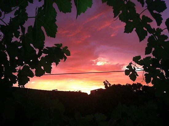 Paso Robles, CA: sunset at the tasting room