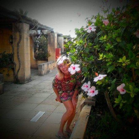 Sannat, Malta: FB_IMG_1483867161012_large.jpg