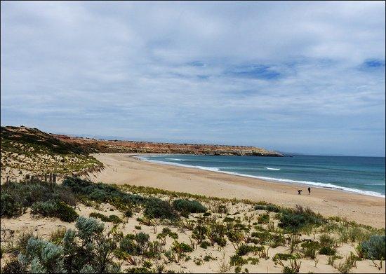 Aldinga Beach, Australië: Maslins. Not far from Aldinga