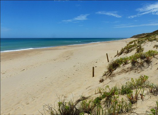 Aldinga Beach, Australië: Maslins Close to Aldinga