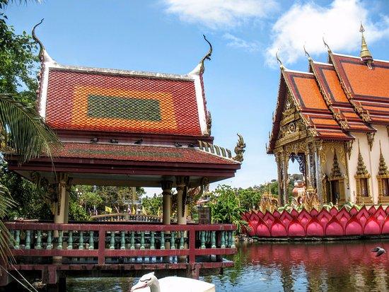 Wat Plai Laem: Из этой беседки можно кормить рыб