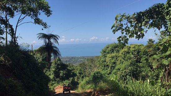Uvita, Costa Rica: Ocean view from the jungle.