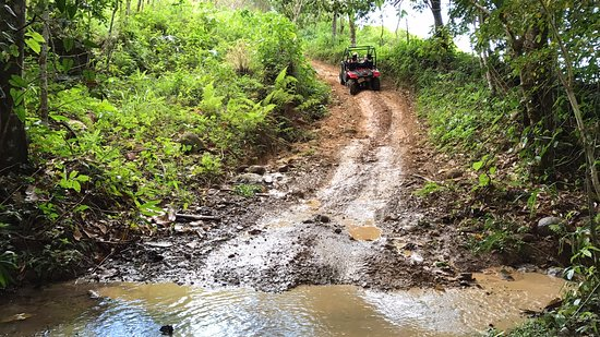 Uvita, Costa Rica: There were fun obstacles you encountered along the way!