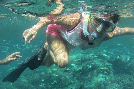 Tanjungbenoa, Indonezja: snorkeling trips