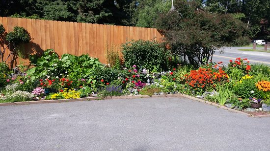 Walkabout Town B&B: Lovely gardens!