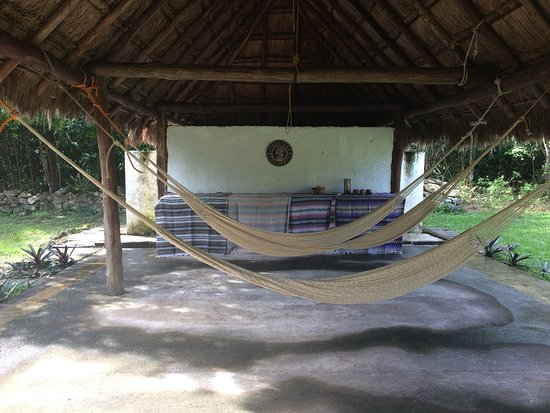 Temazcal Cenote Experience: Hammocks to rest in before or after Temazcal.
