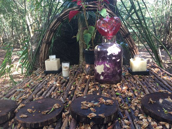 Temazcal Cenote Experience: Prayer alter in nature.