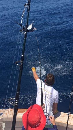 Costa Dourada, Austrália: Bringing in our first Marlin