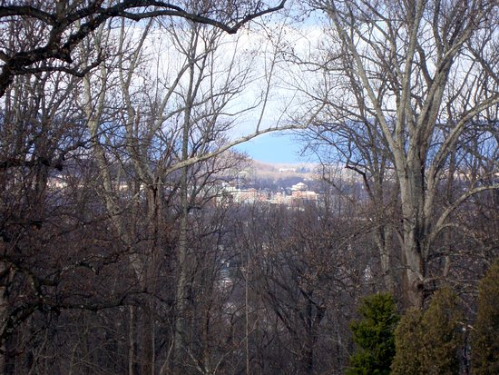 Charlottesville, VA: View of University of Virginia from Monticello