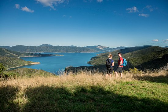 Marlborough Region, Nueva Zelanda: Queen Charlotte Track