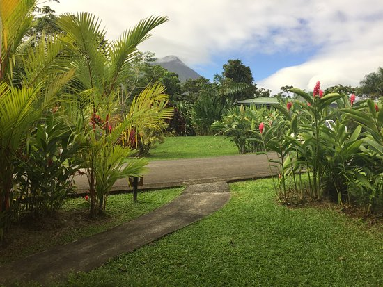 Arenal Manoa Hotel: Morning View from my Room