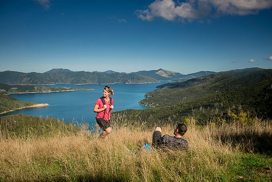Marlborough Region, Neuseeland: Resting on Queen Charlotte Track