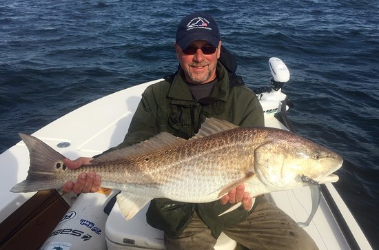Georgetown, SC Red Drum (Redfish)