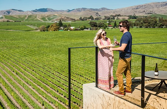 Marlborough Region, Nueva Zelanda: Brancott Estate