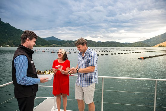 Marlborough Region, New Zealand: Tasting Greenshell Mussels from the mussel farm