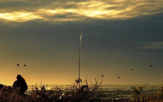 Whakatane, New Zealand: Fishing the Birdwatch Sunset