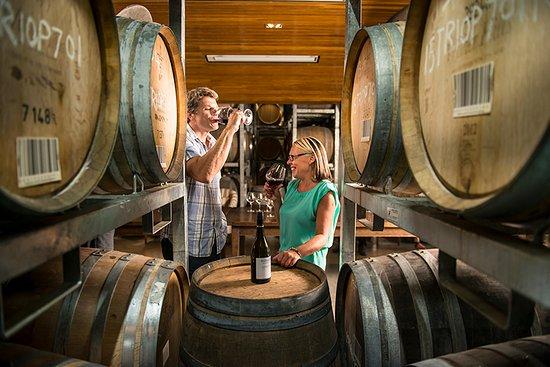 Marlborough Region, New Zealand: Wine tasting at Wairaru River Estate