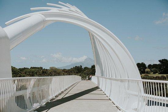New Plymouth, Nya Zeeland: Bridge!