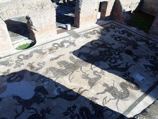 Ostia Antica, Italia: Mosaic flooring