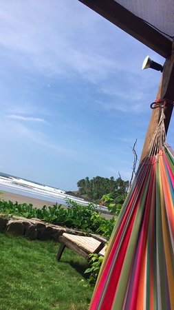 Las Flores Resort: hammock by the beach