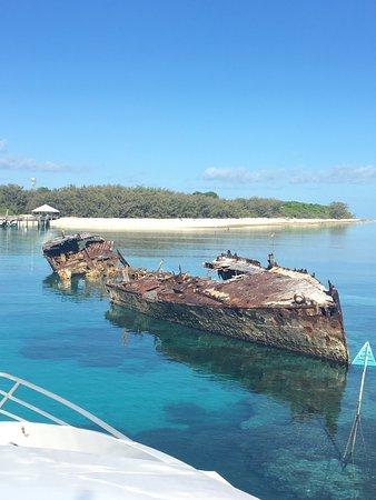 Heron Island, Australie : photo3.jpg