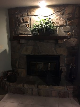 Tree Tops Resort: Fireplace in condo.