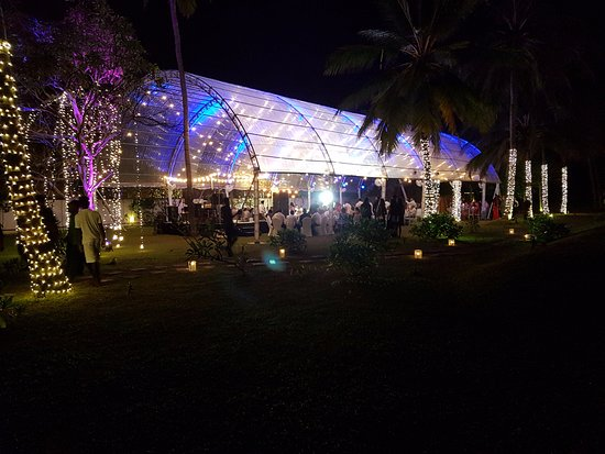 Marquee For Wedding Reception Picture Of Taprobana Wadduwa By Asia