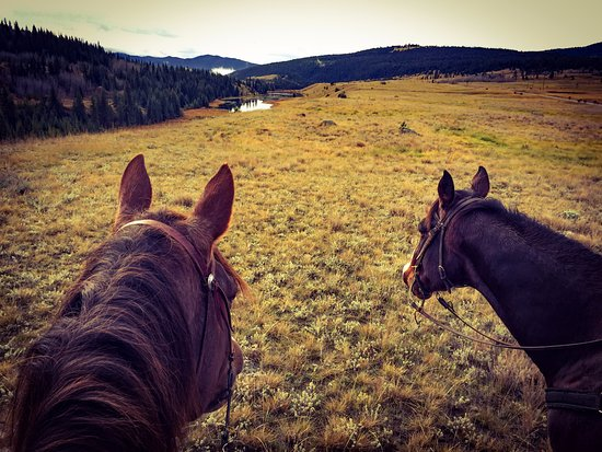 Big Bar Guest Ranch: Riders view of the trail ride