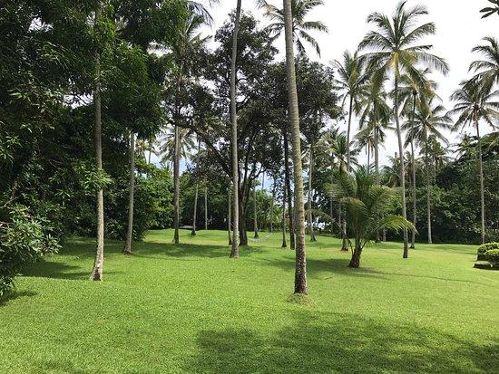 Manggis, Indonésie : photo9.jpg