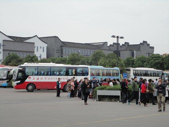 Tongxiang Image