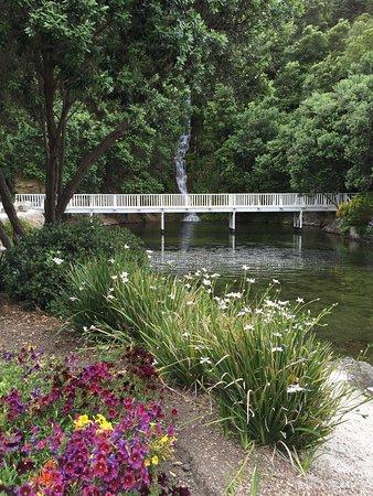 Νάπιερ, Νέα Ζηλανδία: Centienial Waterfall
