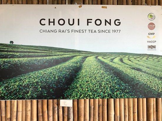 Mae Chan, Thailand: photo2.jpg