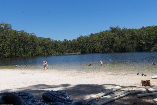 Pemberton, Australia: Dam left of swim area