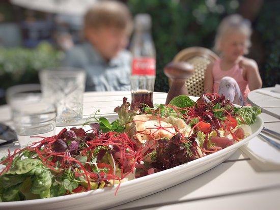 Stege, Denmark: gedeost-salat