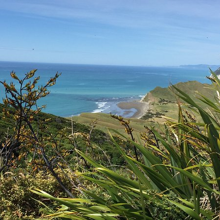 Gisborne, New Zealand: View from the top.