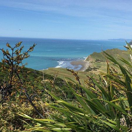 Gisborne, Nueva Zelanda: View from the top.
