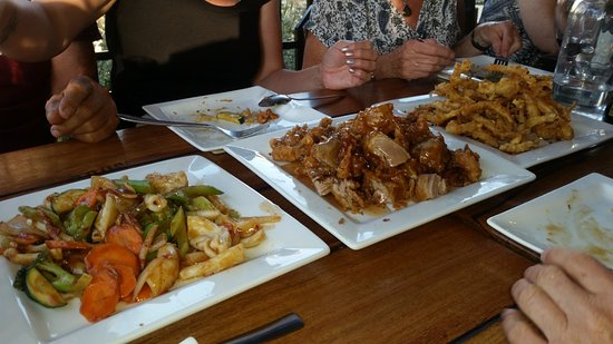 Mallacoota, Australia: Crispy, whitebait, Crispy duck and squid and vegetable stirfry