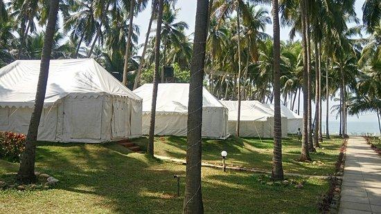 Ashvem Beach, India: Exteriors