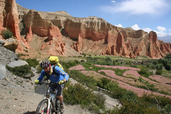 the adventures of little red mountain biker Dirt bike adventures there is a lot of two-track trails and some fun single track especially in the red mountain this little town was once a mining town.