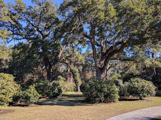 Charles Pinckney National Historic Site: Photo du parc
