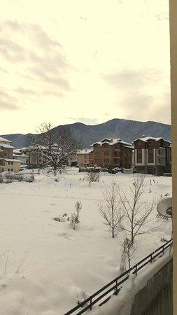 Mountview Lodge Photo