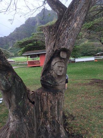 Kaneohe, Havaí: photo7.jpg