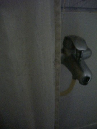 Vy Khanh Guesthouse: shower curtain