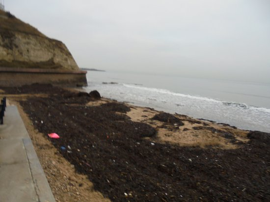 Sunderland, UK: Piles of seaweed, plastic, and other waste on roker beach
