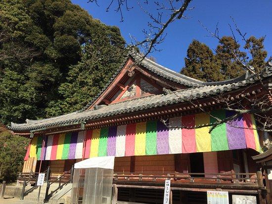 Yamatokoriyama, Japón: photo2.jpg