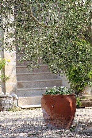 Bilde fra Chateaurenard